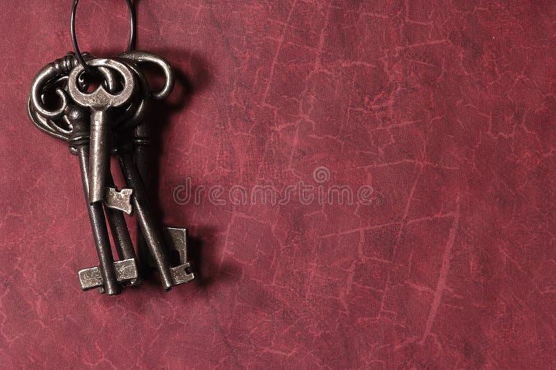 Download Keys skelett arkivfoto. Bild av tangenter, gammalt, antikviteten - 37446