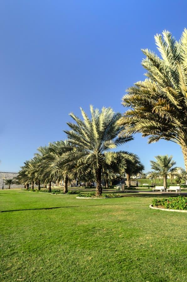 Khalid Lake Trail Sharjah UAE royalty free stock photography