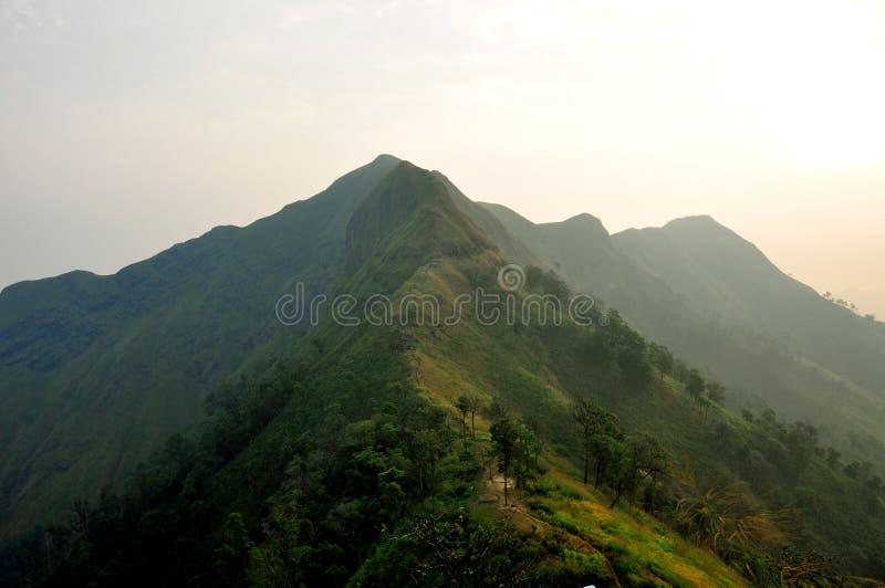 Khao-Chang-Puak royaltyfria bilder