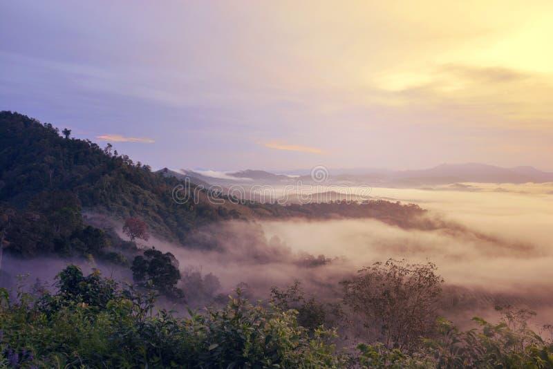 Download Khao Khai Nui image stock. Image du nuages, matin, forrest - 87708813