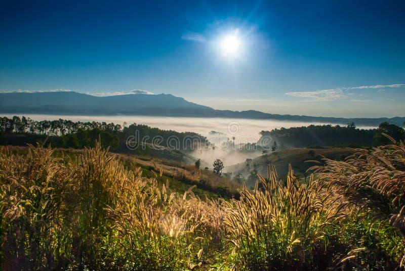 Khao Kho, Phetchabun, Ταϊλάνδη το όμορφες πράσινες βουνό και η ομίχλη τομέων το πρωί και το μπλε ουρανό στοκ φωτογραφία με δικαίωμα ελεύθερης χρήσης