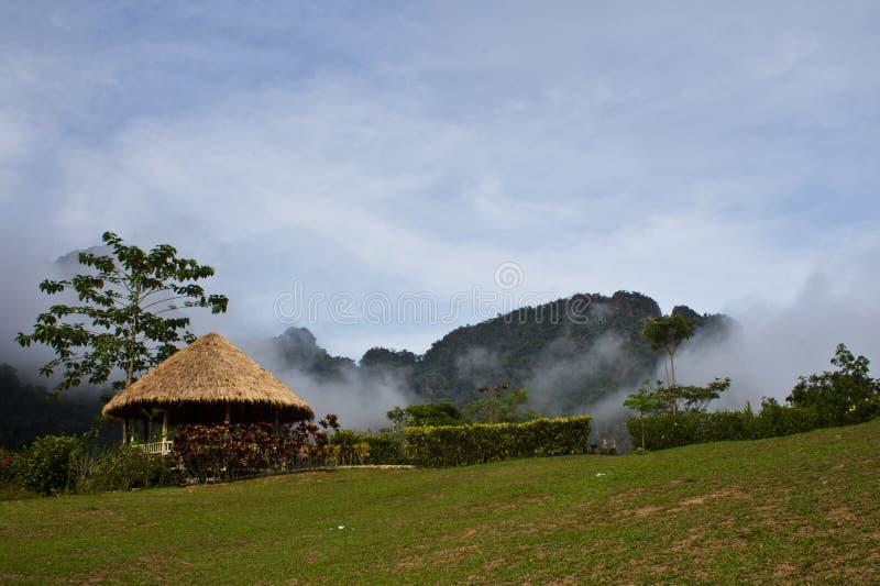 Khao-sok dans le brouillard image libre de droits