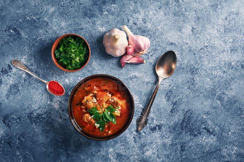 Kharchosoep - nationale Georgische keukenschotel met rundvlees, rijst, knoflook en tkemali Traditioneel authentiek Kaukasisch voe royalty-vrije stock foto