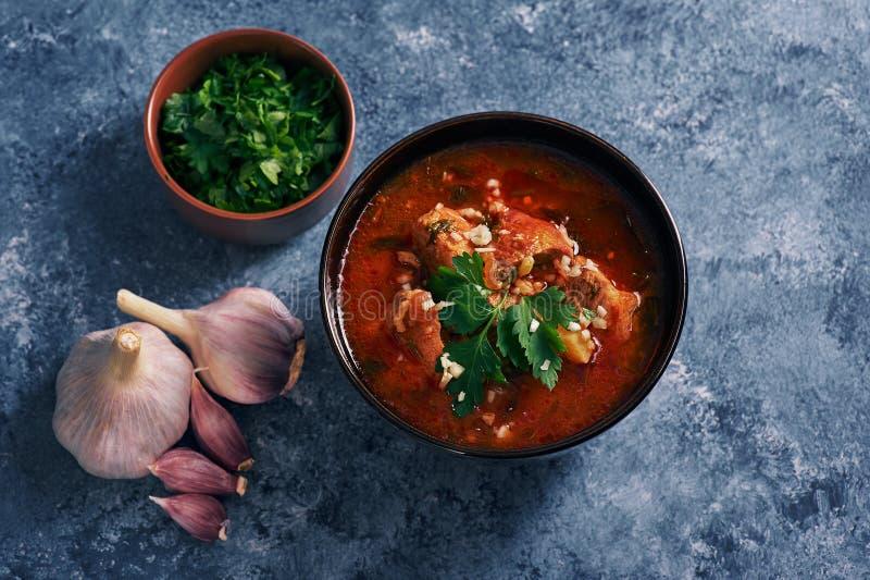 Kharchosoep - nationale Georgische keukenschotel met rundvlees, rijst, knoflook en tkemali Traditioneel authentiek Kaukasisch voe royalty-vrije stock fotografie