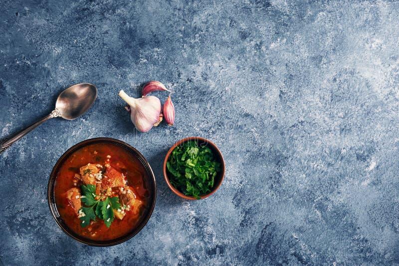 Kharchosoep - nationale Georgische keukenschotel met rundvlees, rijst, knoflook en tkemali Traditioneel authentiek Kaukasisch voe royalty-vrije stock afbeelding