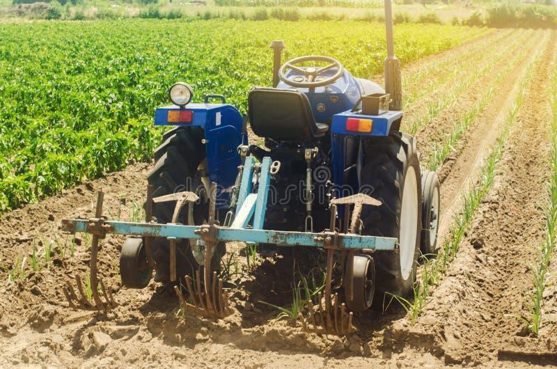 KHERSON UKRAINA - Juni 30, 2019: En traktor plogar en purjolök i ett fält Ploga jord Ogrässkydd S?songsbetonat lantg?rdarbete arkivfoton