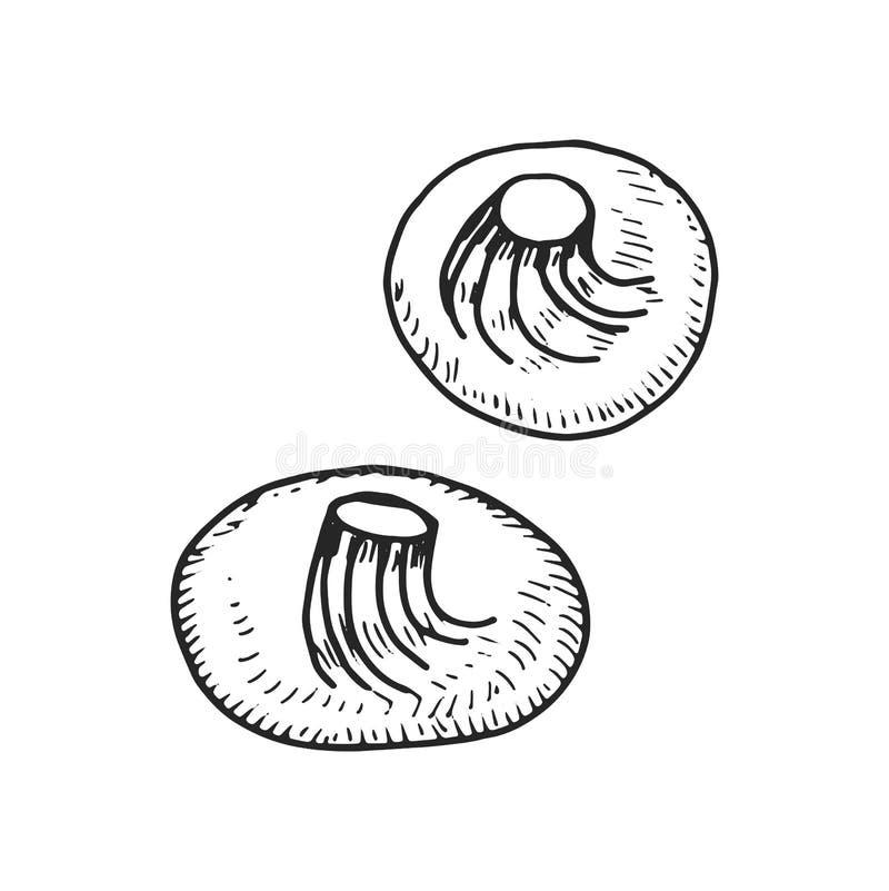 Khinkali kluch ikona odosobniony rysunku przedmiot ilustracja wektor