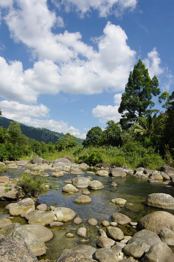 Download The Khiriwong Brook Royalty Free Stock Photo - Image: 33687645