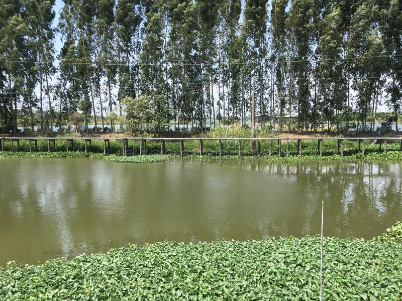 Khlong Preng运河在国家Chachoengsao泰国 图库摄影