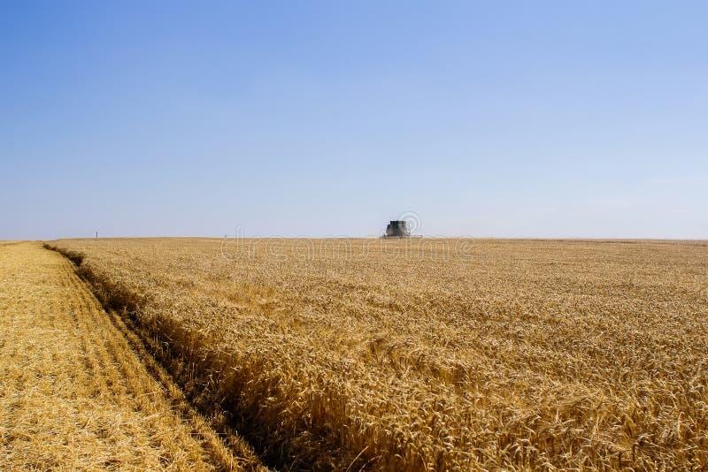 Khmelnitskiy, Ukraine - July 23: Modern John Deere combine harve. Sting grain in the field near the town Khmelnitskiy, Western Ukraine July 23, 2015 stock image