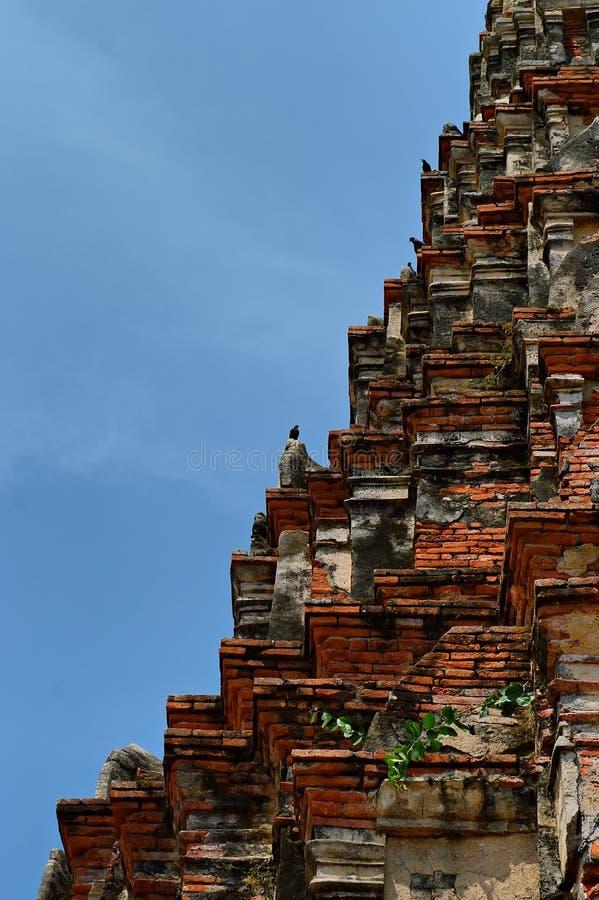 Khmertowerb und -krähen lizenzfreie stockbilder