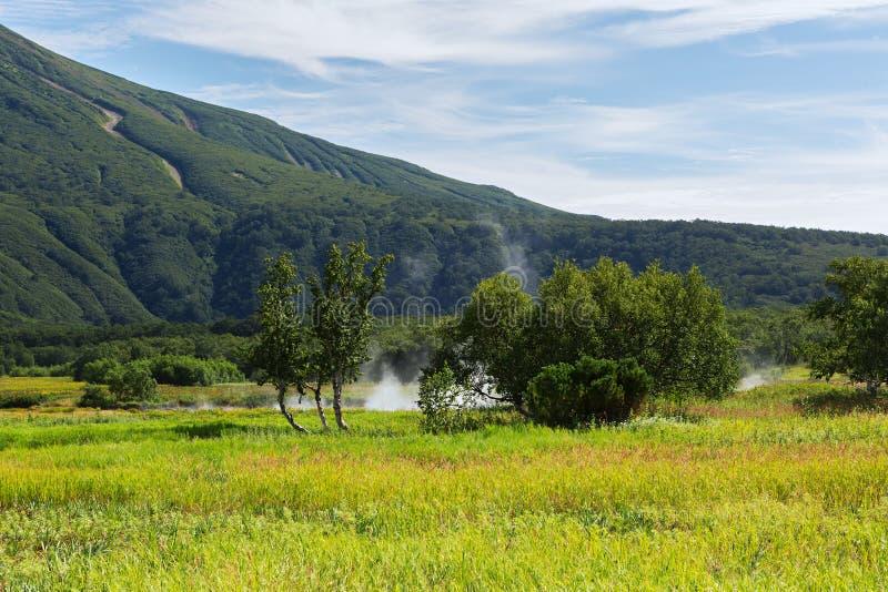 Khodutkinskiye Hot Springs på foten av vulkan Priemysh Den södra Kamchatka naturen parkerar arkivfoton