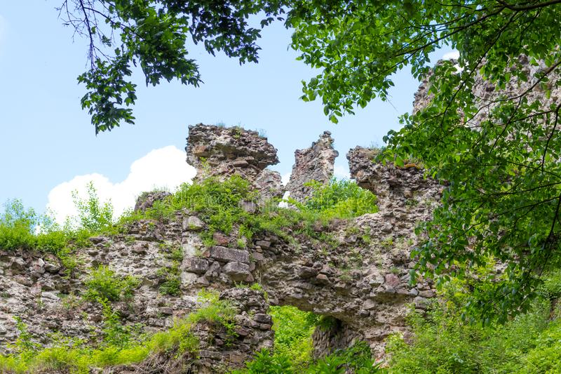 KHUST, УКРАИНА - 15-ОЕ МАЯ 2015: руины замка на холме в городе Khust стоковые изображения rf