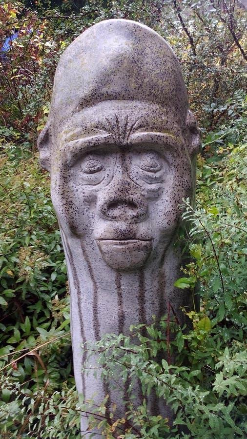 Ki Kong Дон стоковая фотография