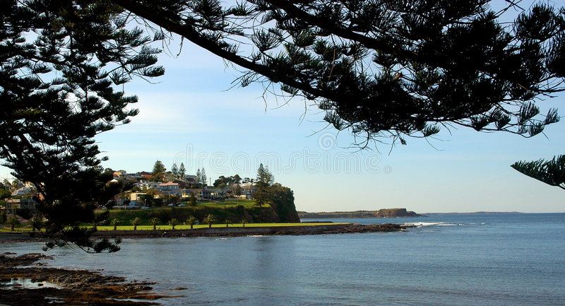 Download Kiama stock photo. Image of cliff, tree, blue, calm, leaves - 6682970