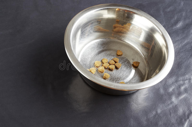 Kibble dog or cat food in bowl stock photo