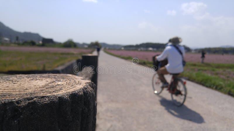 Kibi Plain Bicycle Route stock images
