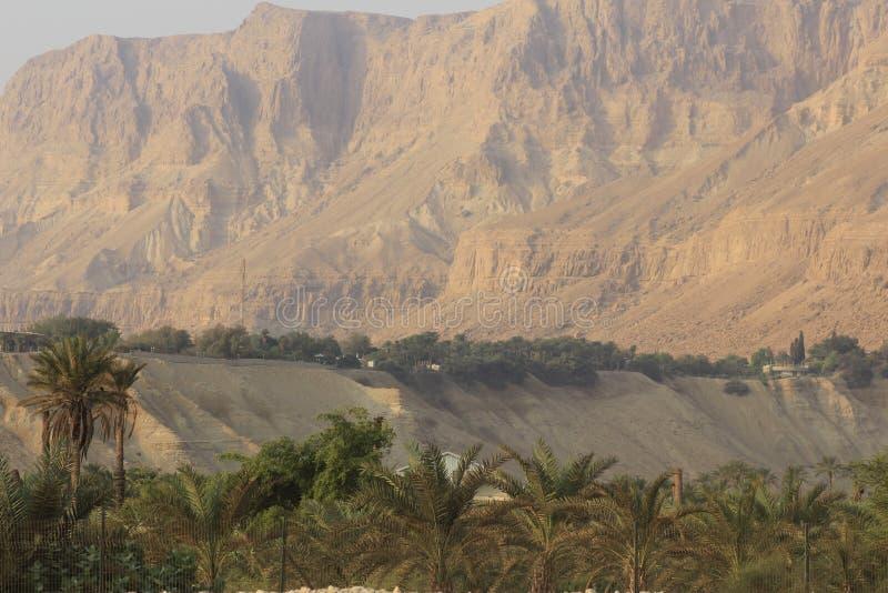 Kibuc Ein Gedi w pustyni Judea, Nieżywy morze, ziemia święta zdjęcia stock