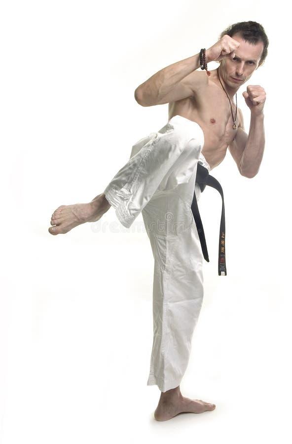 kick arkivfoto