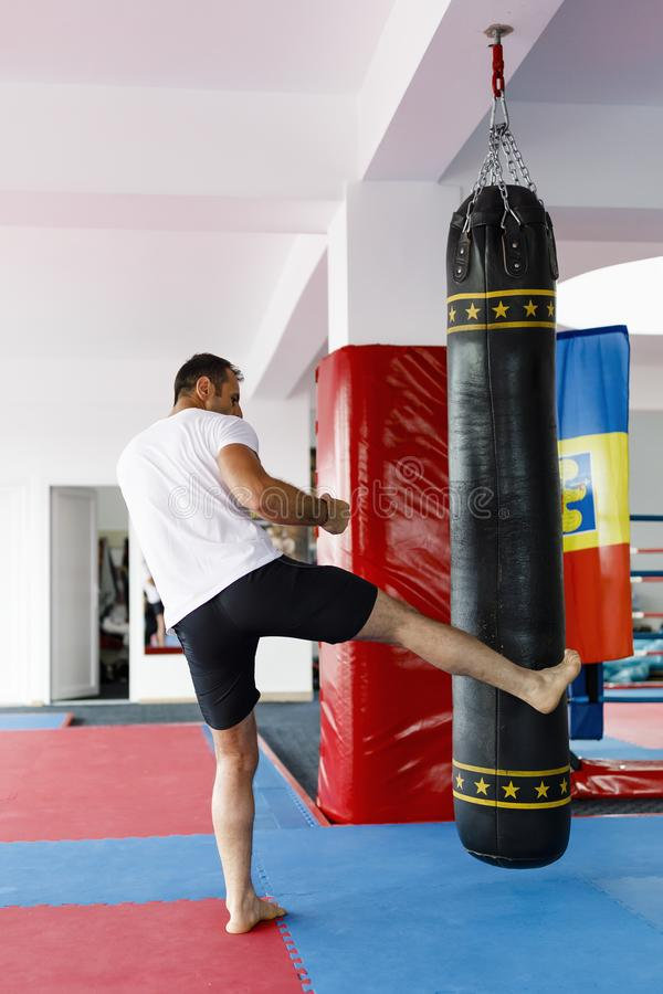 Kickbox fighter training in a gym with punch bags, see the whole stock image
