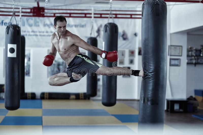 Kickbox fighter training with the punch bag royalty free stock image