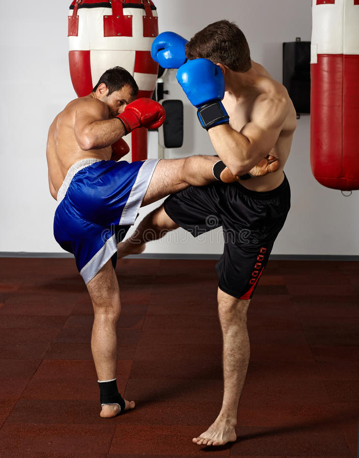Kickbox fighters sparring in the gym. Two kickbox fighters training in the gym royalty free stock image