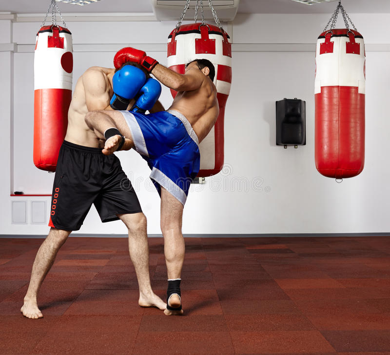 Kickbox fighters sparring in the gym. Two young kickbox fighters training in the gym royalty free stock photography