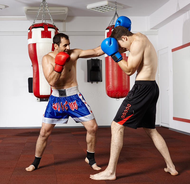 Kickbox fighters sparring in the gym. Two young kickbox fighters training in the gym royalty free stock image