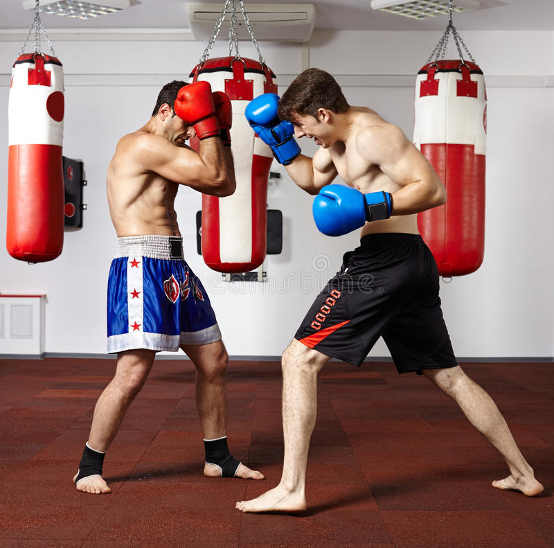 Kickbox fighters sparring in the gym. Two young kickbox fighters training in the gym stock photography