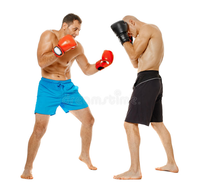 Kickbox fighters sparring royalty free stock photography