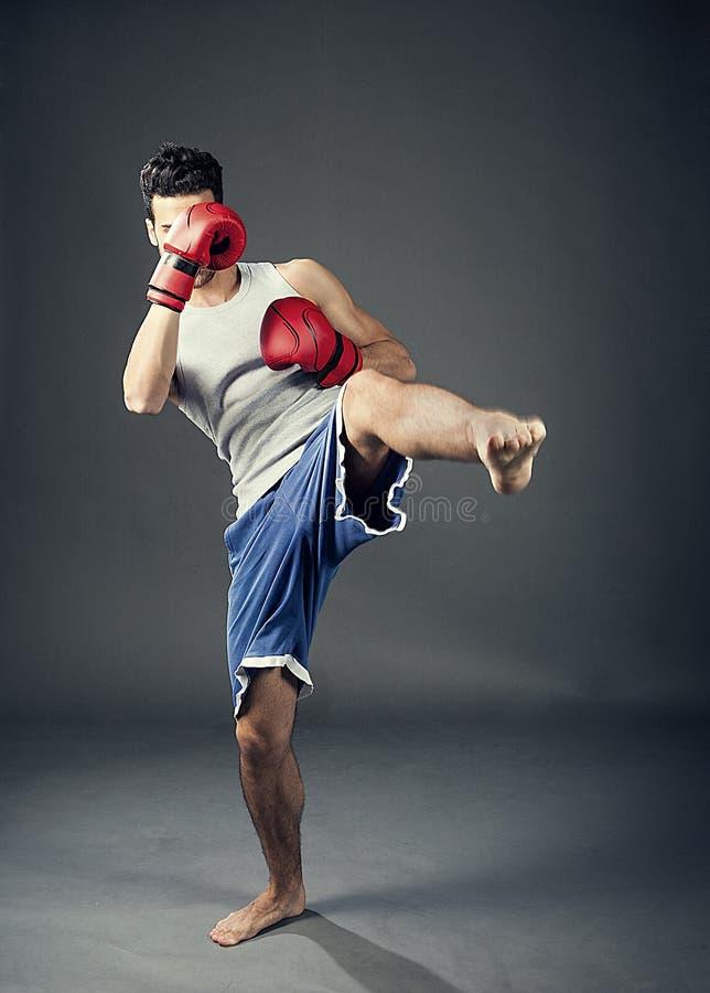 Kickboxare royaltyfria foton