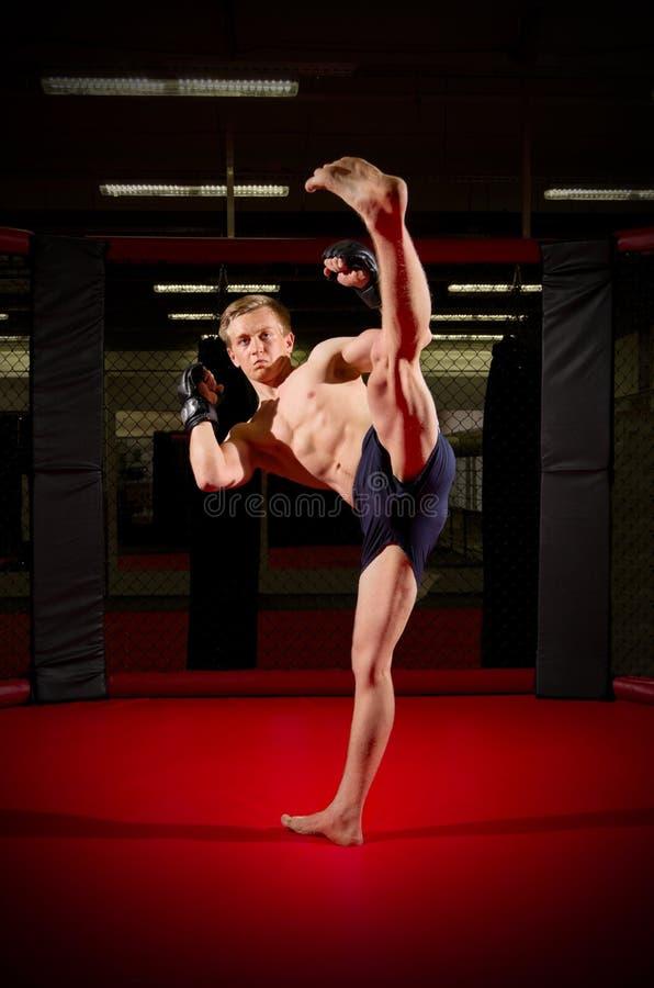 Kickboxer在体育馆里 库存图片