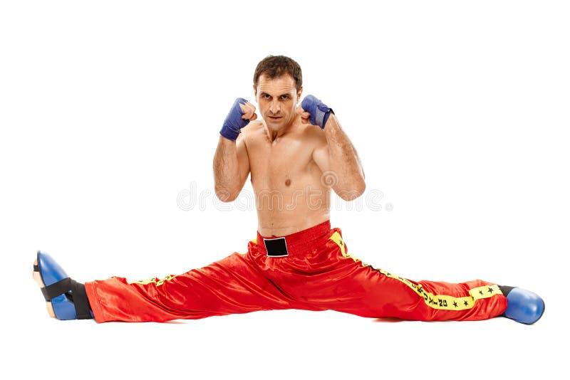 Kickboxer隔绝了执行分裂 库存图片
