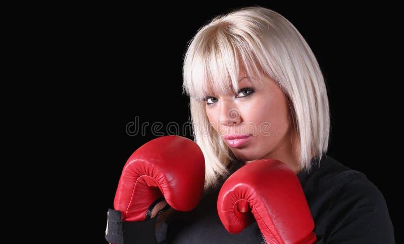 Kickboxer 库存照片