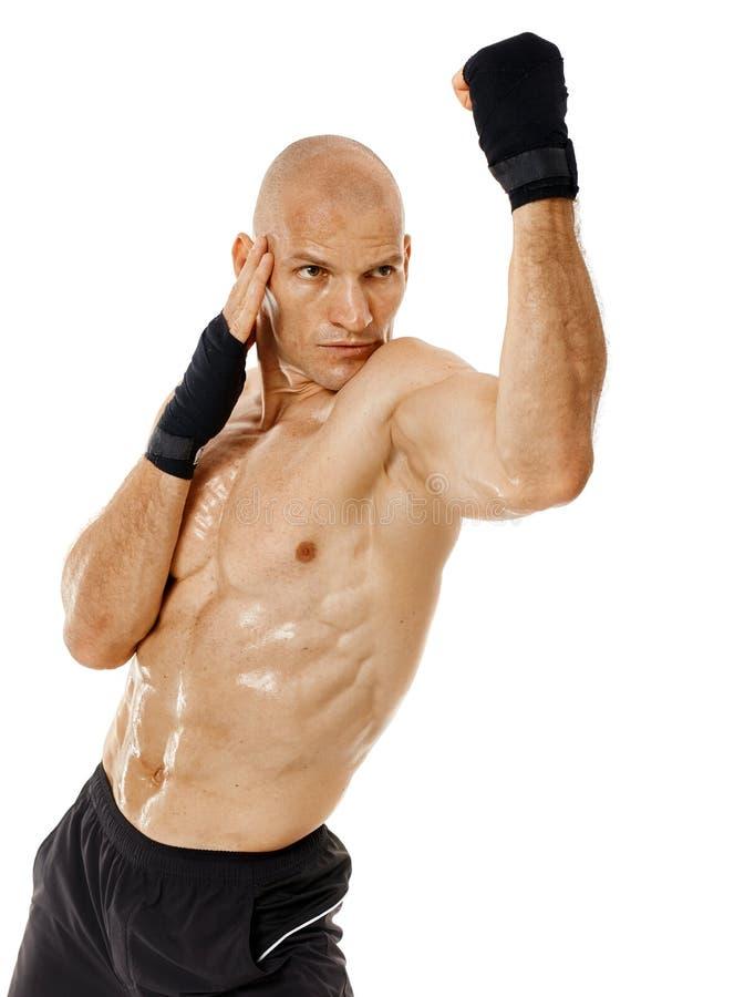 Kickboxer muy cabido que perfora en blanco fotos de archivo