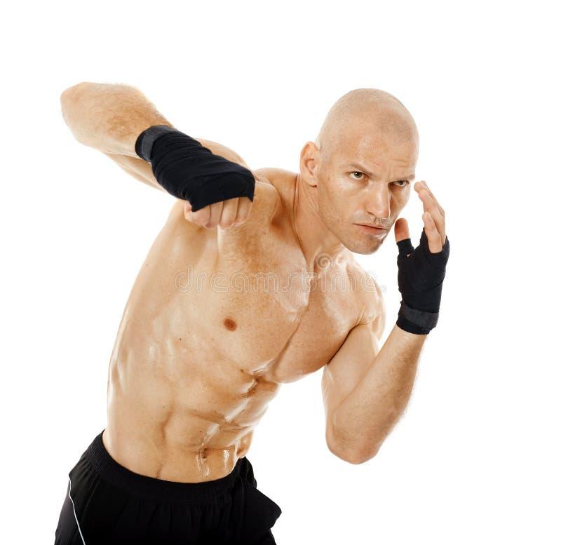 Kickboxer muy cabido que perfora en blanco foto de archivo