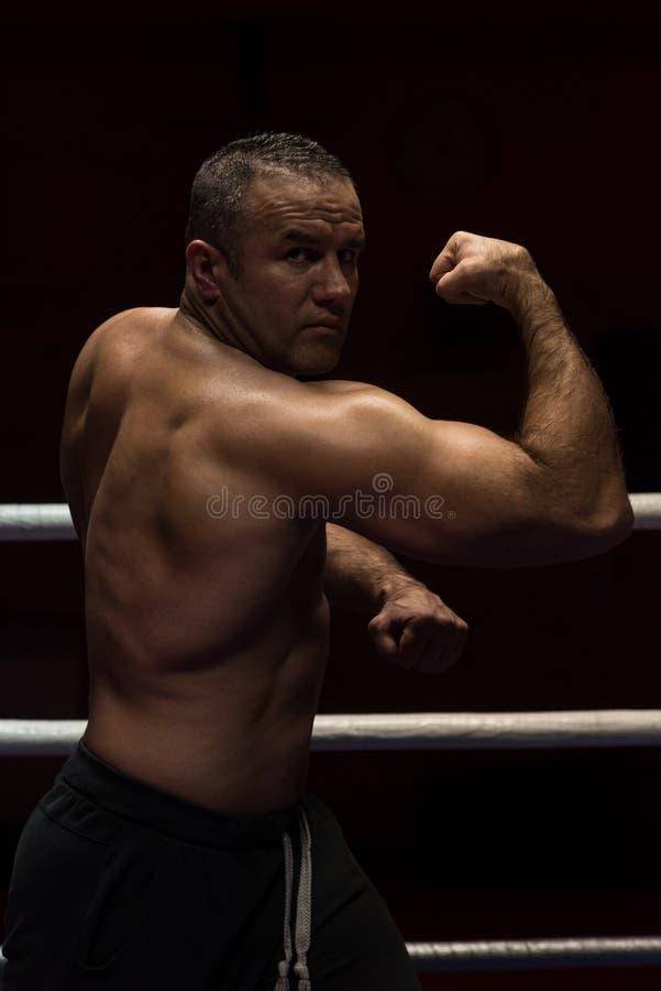 Kickboxer profesional en el anillo del entrenamiento imagen de archivo libre de regalías