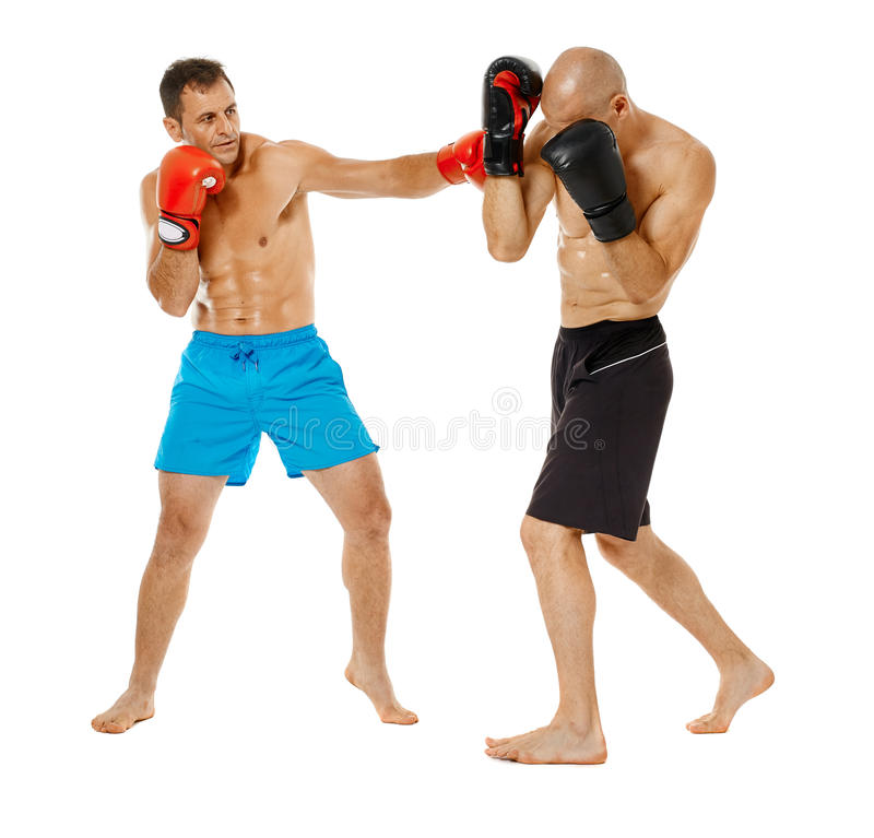 Kickboxers sparring on white royalty free stock images