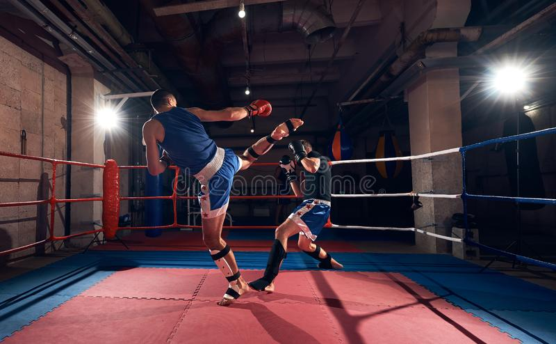 kickboxing在圆环的拳击手训练在健康俱乐部 库存照片