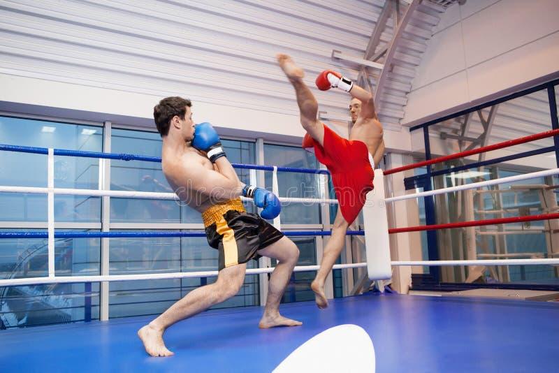 kickboxing的人。 库存照片