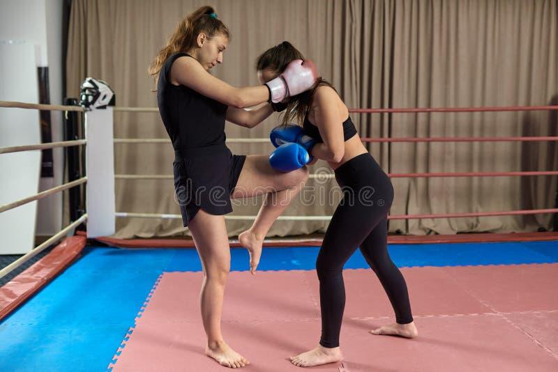 Kickboxing dziewczyn zaciera? si? zdjęcia royalty free