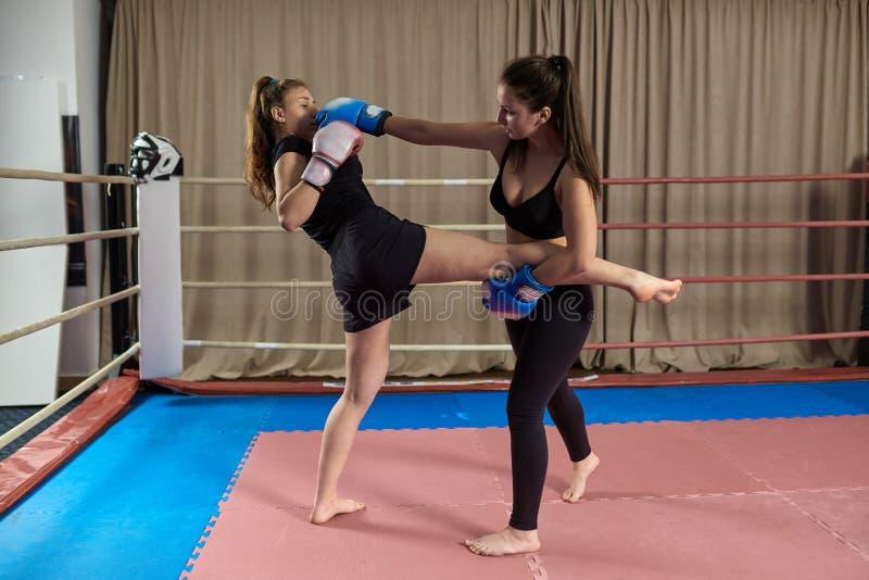 Kickboxing dziewczyn zaciera? si? obrazy royalty free