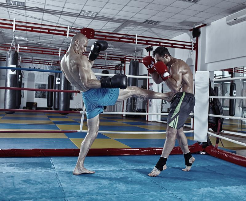 Kickboxvechters in de ring stock afbeelding