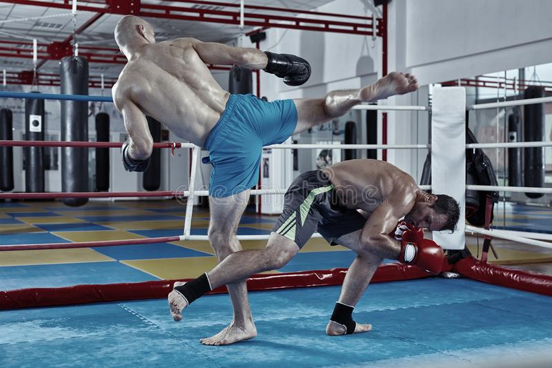 Kickboxvechters die in de ring sparring stock foto