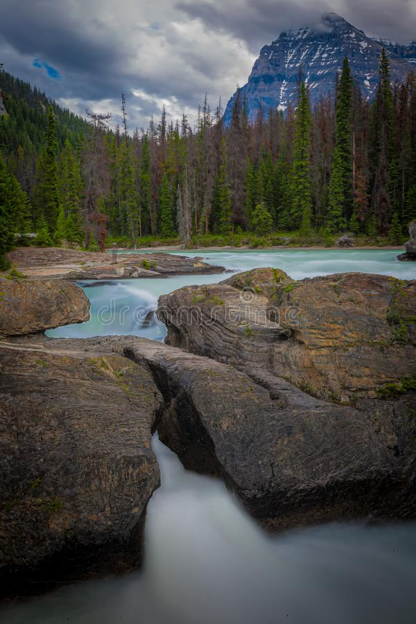 Kicking Horse River, Yoho National Park, British Columbia, Canada stock foto