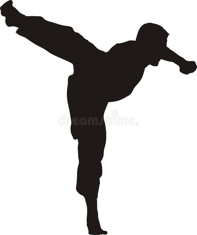 Kicking karate fighter silhouette vector illustration