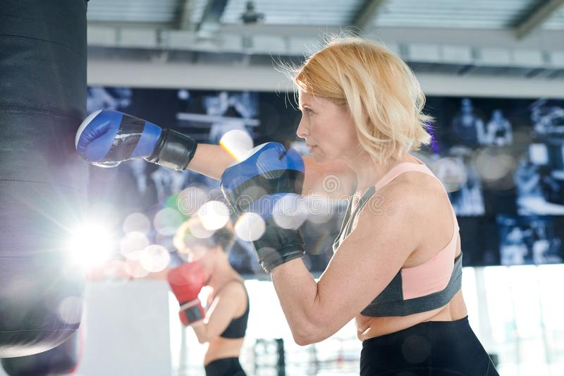 Kicking punchbag. Active sportswoman in boxing gloves hitting punchbag while training in gym or contemporary leisure center stock photos