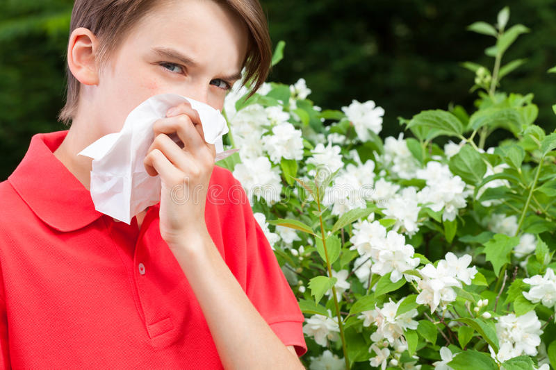 Kid with allergic rhinitis in a spring garden. Teenage boy with hay fever blowing his nose allergic to bloom flowers in a spring garden stock photography