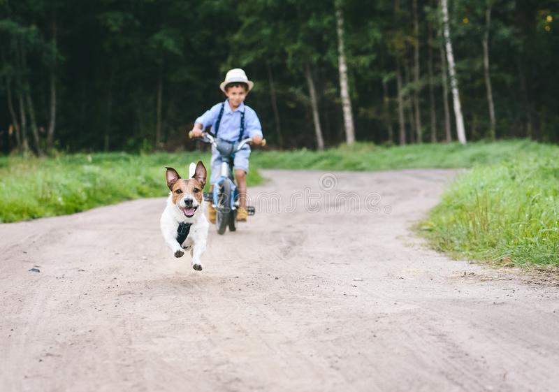 Kid boy on bicycle riding after dog running by country dirt road royalty free stock photography