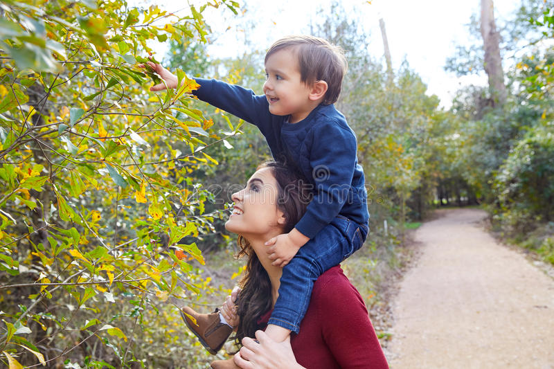 Kid boy sit on mother shoulders picking leave royalty free stock photography